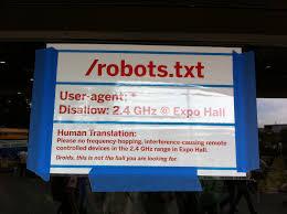 রোবট.ফাইল (Robots.txt)কি এবং কেন?